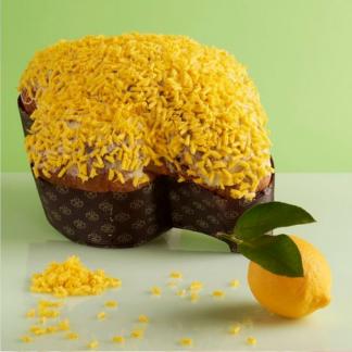 colomba limone gabbiano